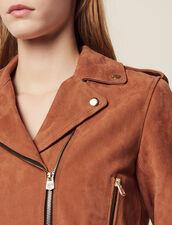 Suede Perfecto Jacket : Coats & Jackets color Terracotta