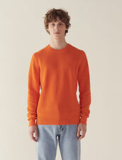 Textured Cotton Knit Sweater : Sweaters color Orange