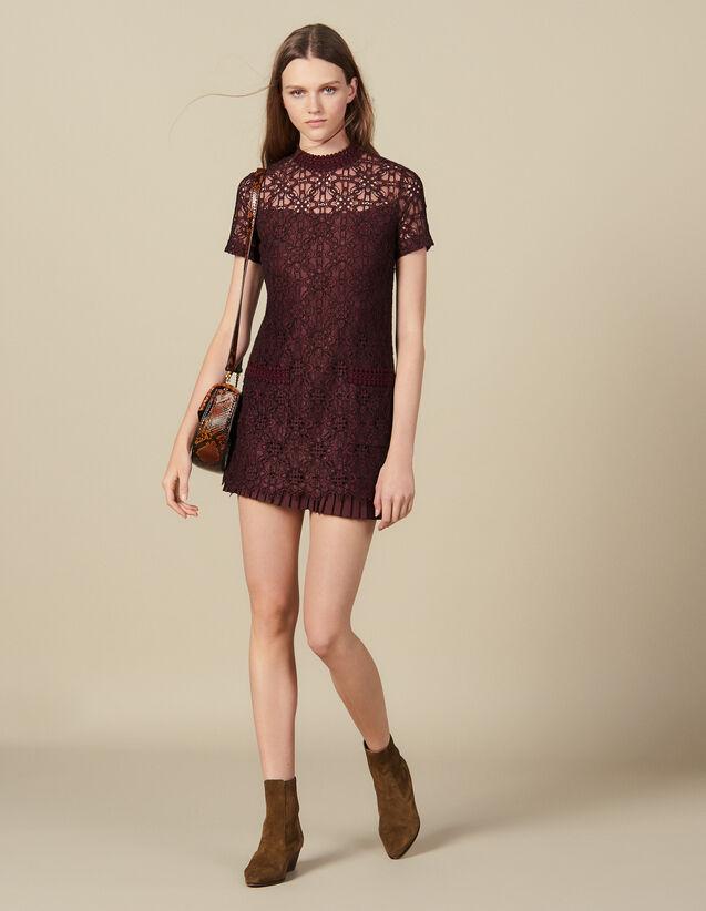 Short lace dress : Dresses color Plum2