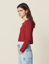 Cropped Knit Cardigan : Sweaters color Terracotta