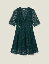 Short Guipure Lace Dress : Dresses color Green