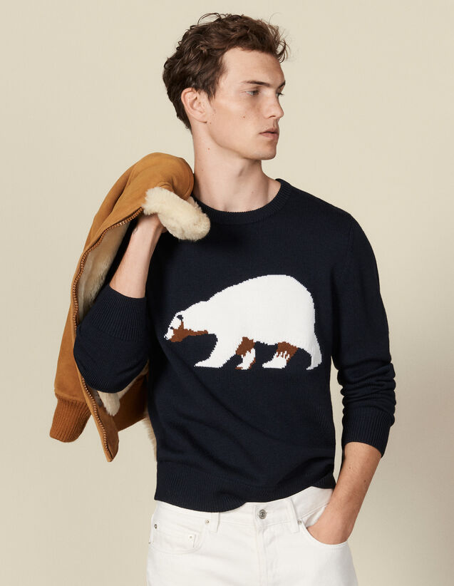 Sweater With Jacquard Bear : Sweaters color Navy Blue