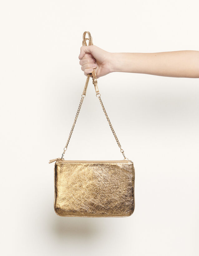 Addict pouch : Spring Pre-Collection color Full Gold